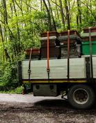 Spesso interi apiari vengono rubati e caricati su camion